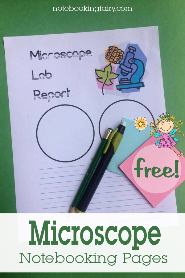 Microscope Notebooking Pages FREE from the Notebooking Fairy