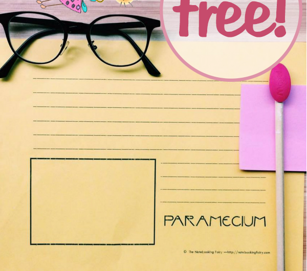 Paramecium Notebooking Pages FREE from the Notebooking Fairy