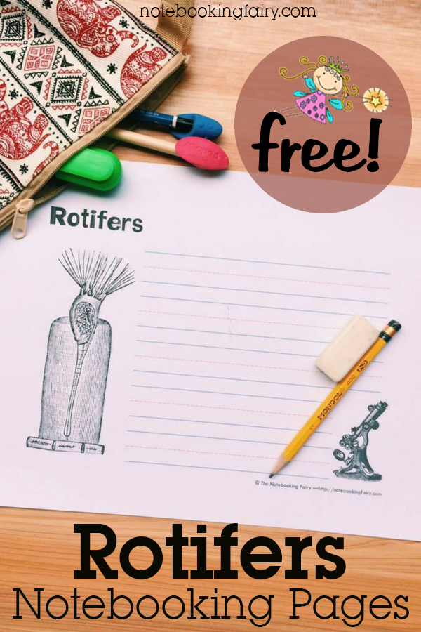 Rotifers Notebooking Pages FREE from the Notebooking Fairy