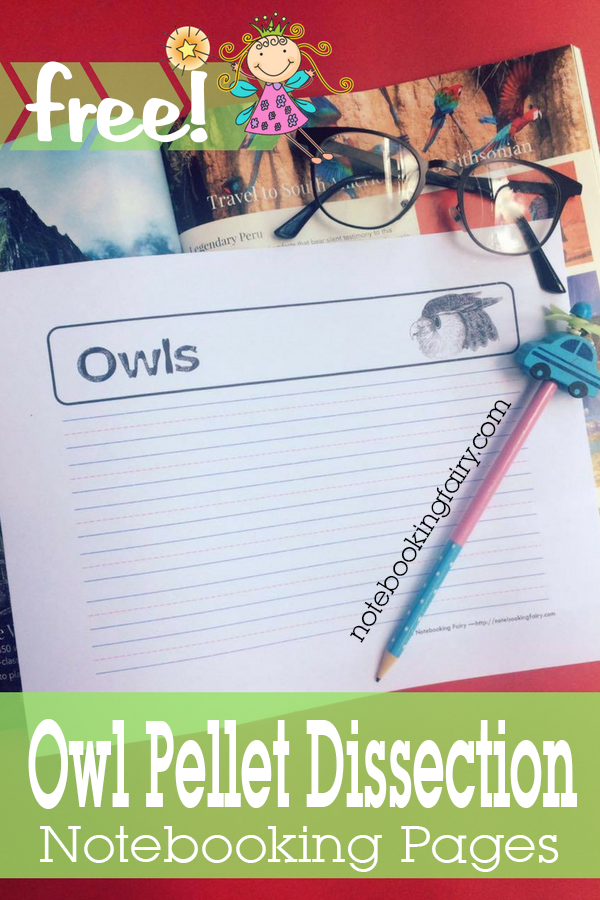 Owl Pellet Discussion Notebooking Pages FREE from The Notebooking Fairy