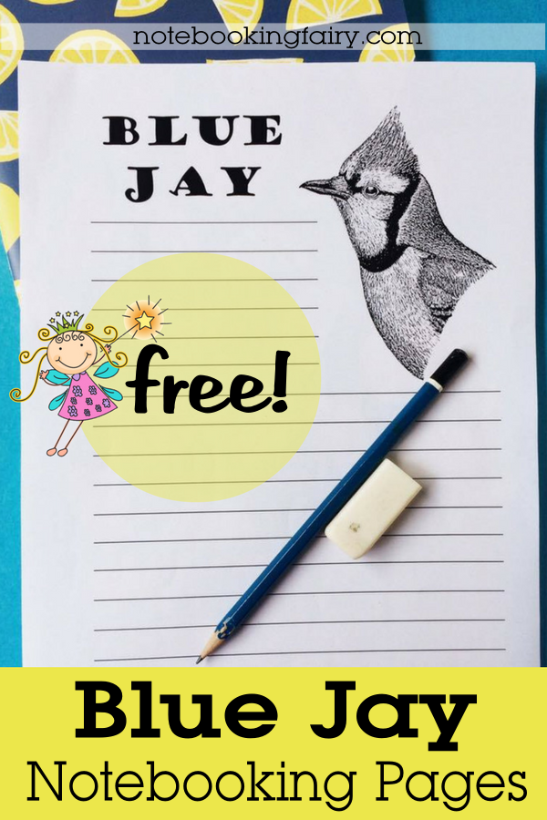Blue Jay Notebooking Pages FREE from the Notebooking Fairy